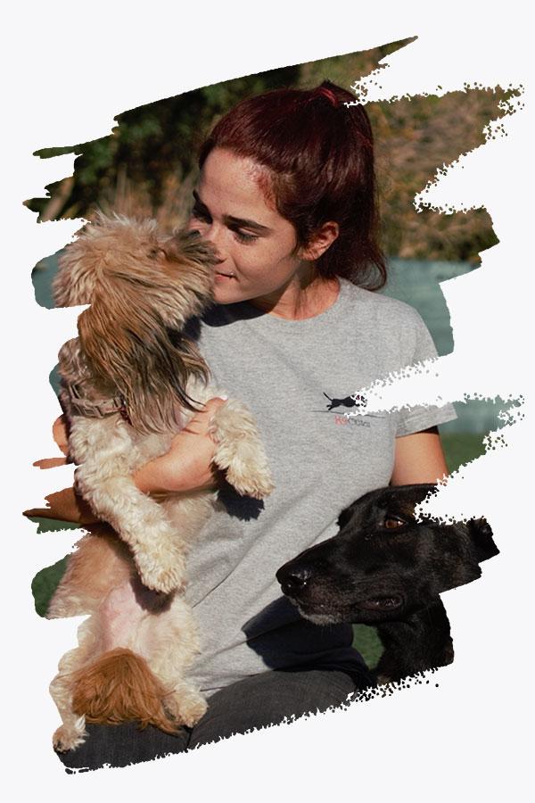 εκπαίδευση σκύλου και βασική υπακοή σκύλου