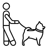 κ9 citizen εκπαιδευτήριο σκύλων στον διόνυσο